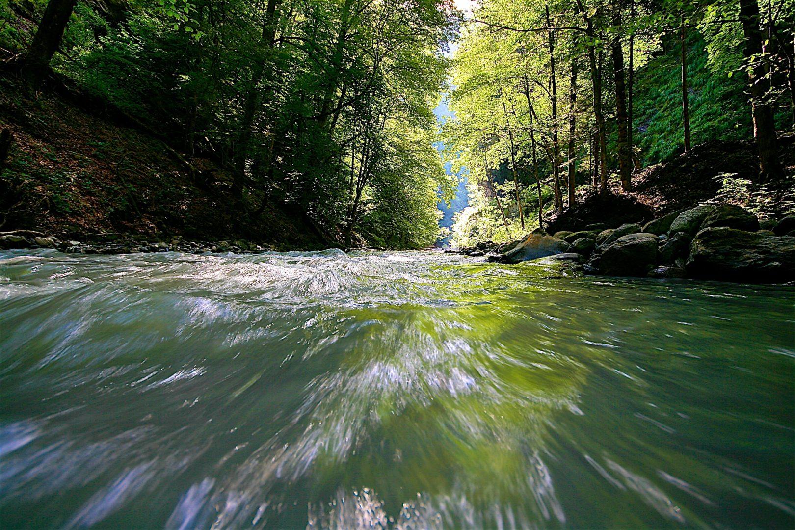 Fluss im Fluss